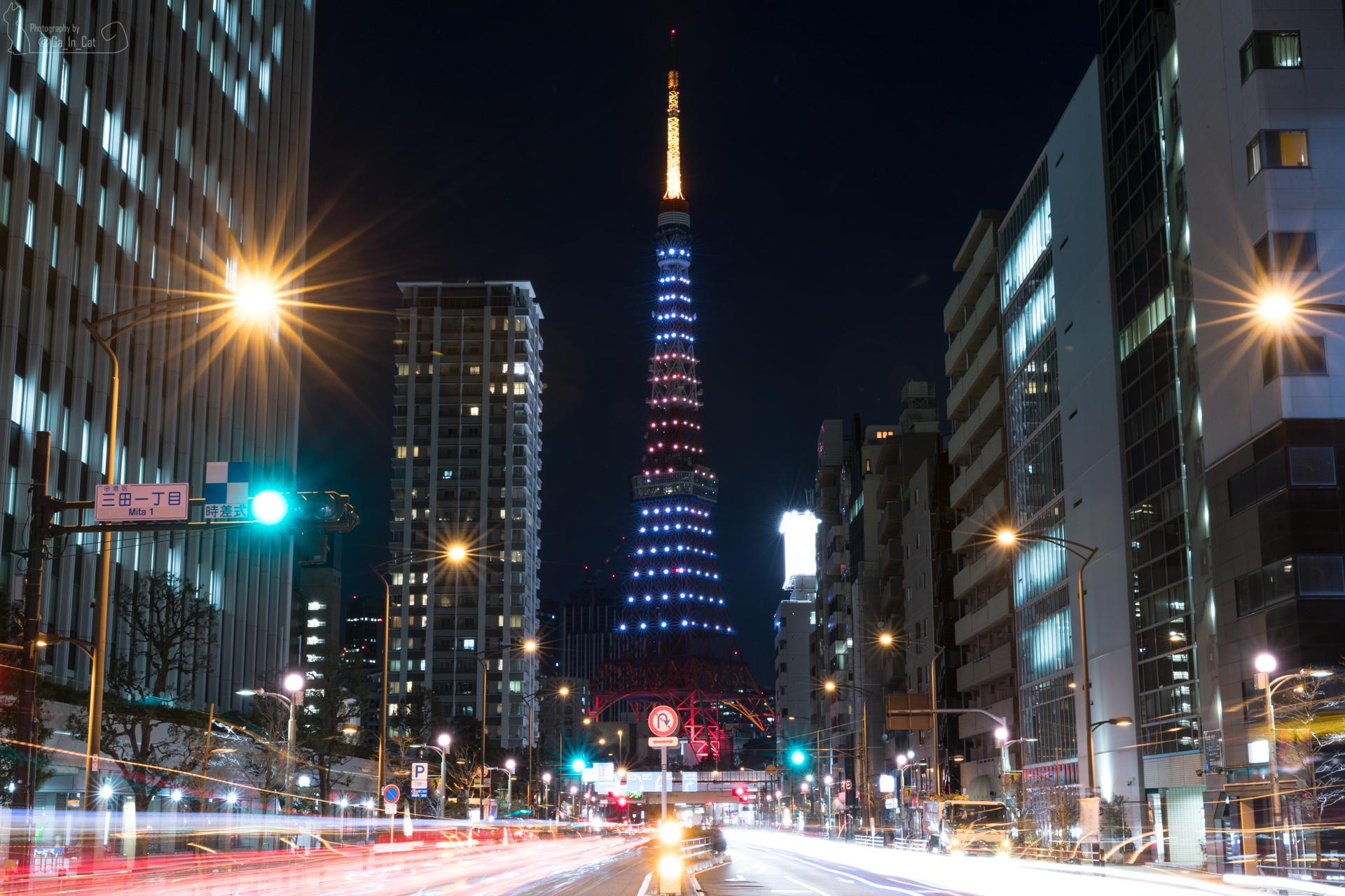 190128 東京タワー 大坂なおみ祝日の丸カラー